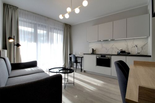 Studio - Medium apartment to rent in Warsaw UPR-A-016-1