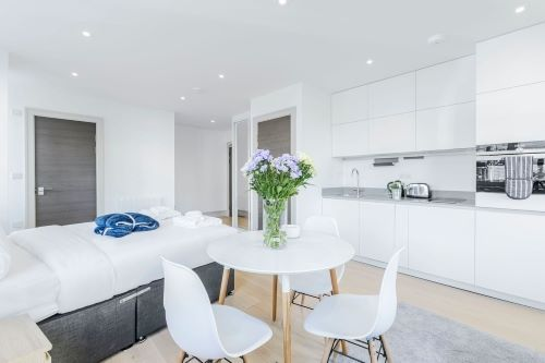 Studio apartment to rent in London FIN-FL-0054
