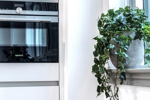 Studio apartment to rent in London ZEN-ZH-0005